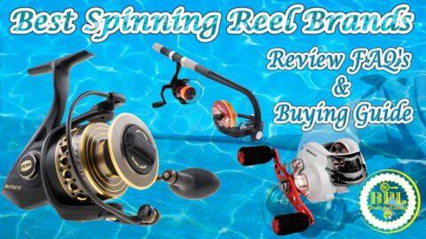 Best Spinning Reel Brands
